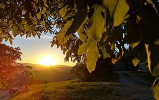 Herbstzeit im Wellnesshotel Zum Bräu - Bayerischer Wald
