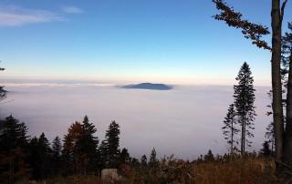 Herbstwanderung Bayerischer Wald