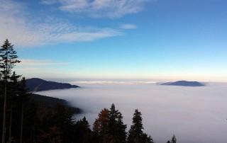 Nebelmeer über dem Bayerischen Wald