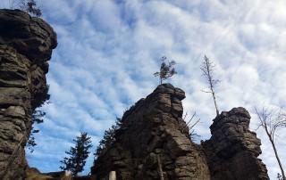 Oedriegel Bayerischer Wald