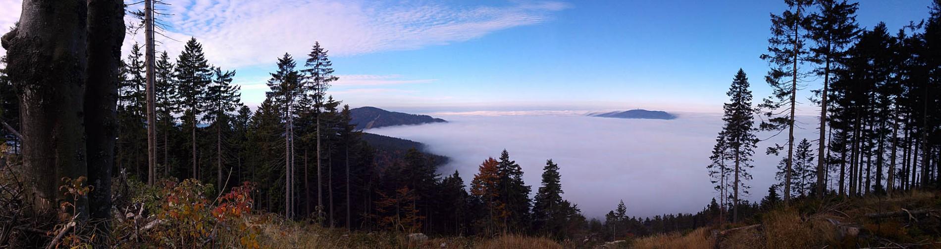 Wanderurlaub im Wellnesshotel Zum Bräu Bayerischer Wald