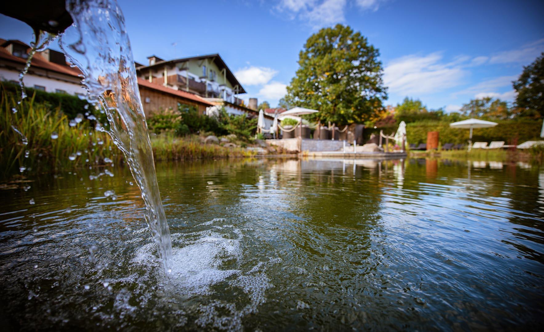 Relaxgarten mit Naturbadeteich unseres Wellnesshotel