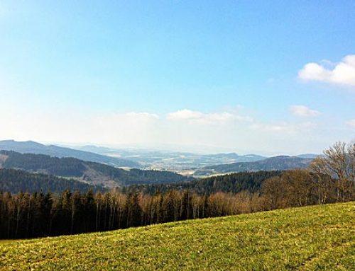 Wanderurlaub im Wellnesshotel Zum Bräu – Bayerischer Wald