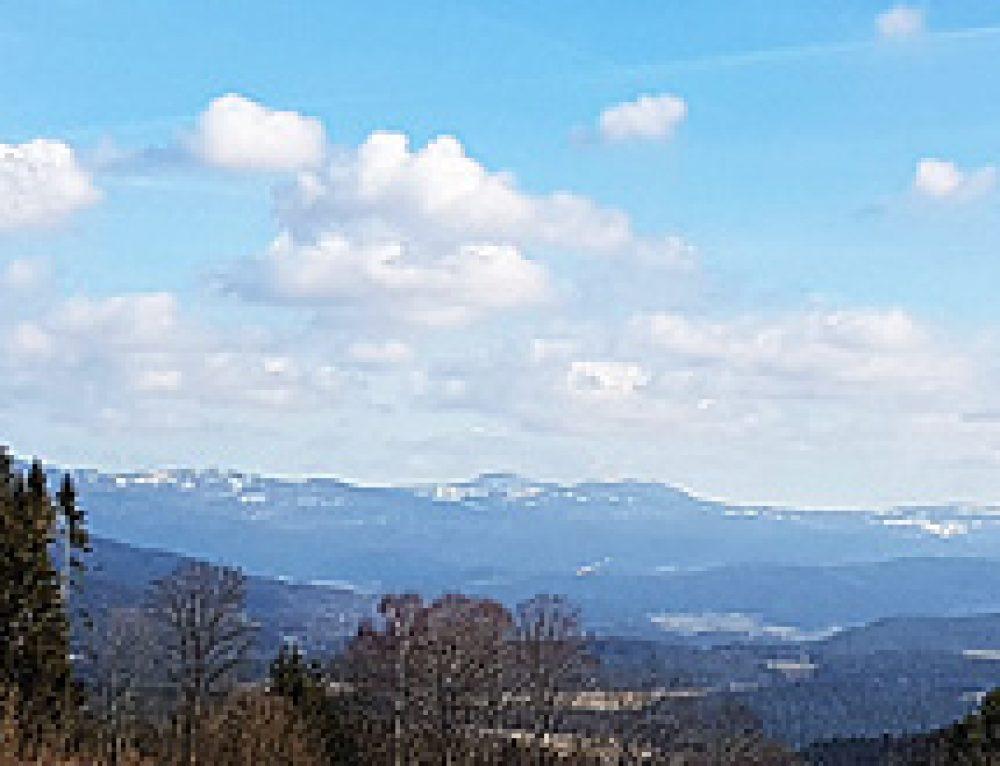 Baublog unseres 4 Sterne Wellnesshotel im Bayerischen Wald