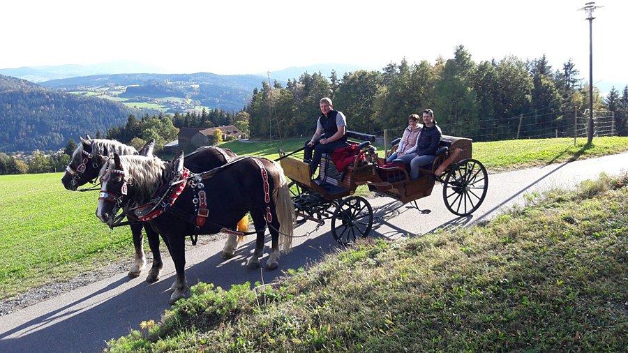 Angebot unseres 4 Sterne Wellnesshotel im Bayerischen Wald: Buchen Sie eine romantische Kutschenfahrt durch den Bayerischen Wald