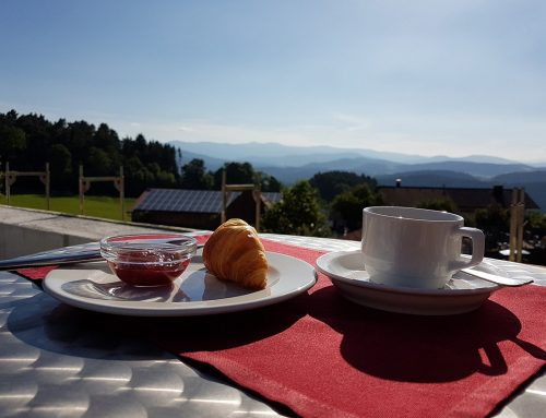 Panoramaterrasse unseres 4 Sterne Wellnesshotel Zum Bräu – Bayerischer Wald