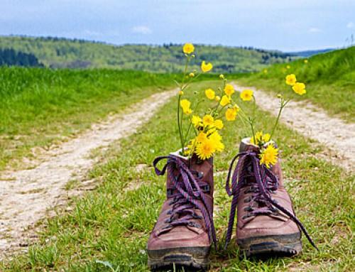 Wander-Aktiv-Tage