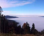 Panorama Bayerischer Wald