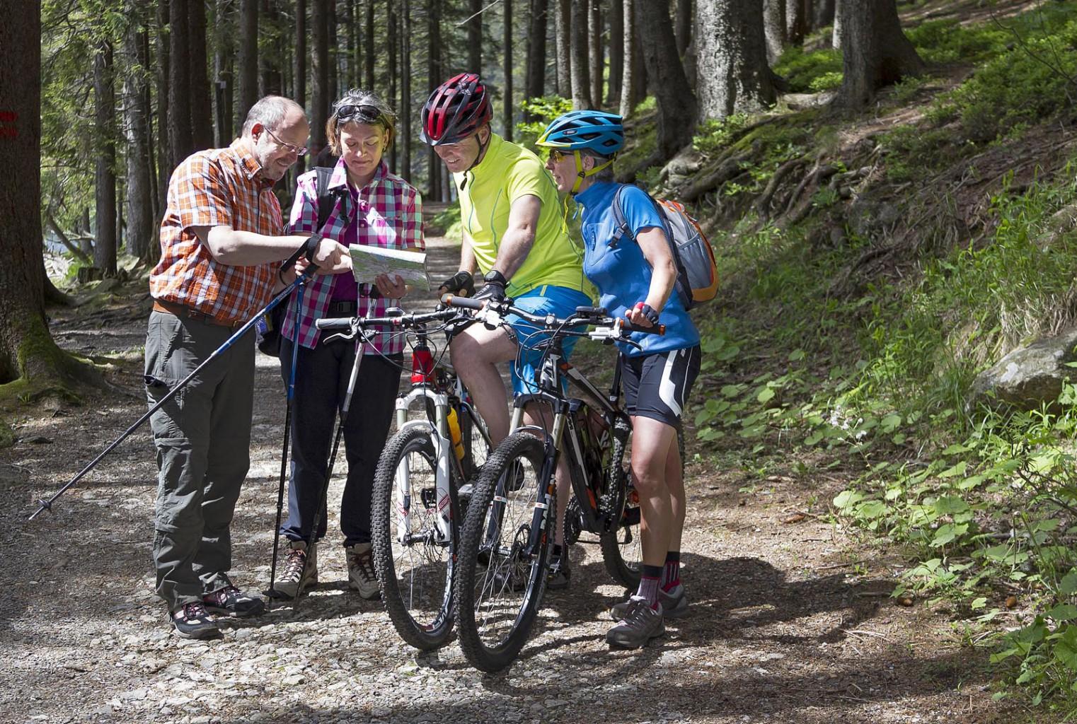 Mountainbike Touren im Bayerischen Wald
