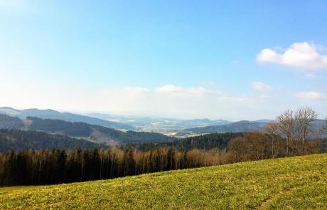 Toller Ausblick beim Wanderlurlaub im Bayerischen Wald