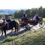 Romantische Kutschenfahrt durch den Bayerischen Wald
