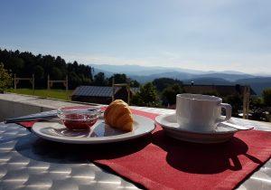 Panoramaterasse unseres 4 Sterne Wellnesshotel Zum Bräu im Bayerischen Wald