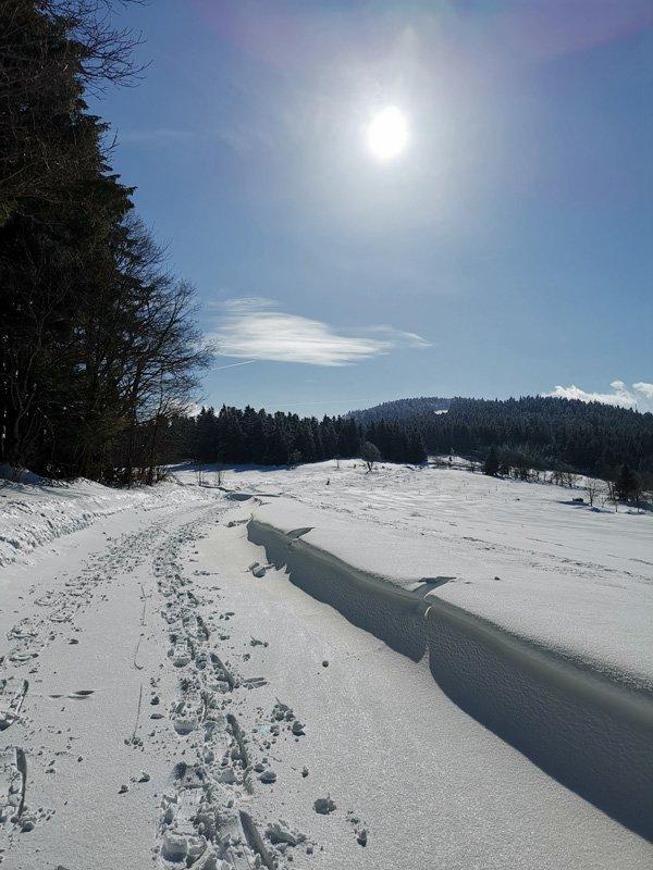 Sonnenschein im Bayerischen Wald