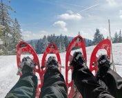 Schneeschuhwandern Bayern 4 Sterne Wellnesshotel