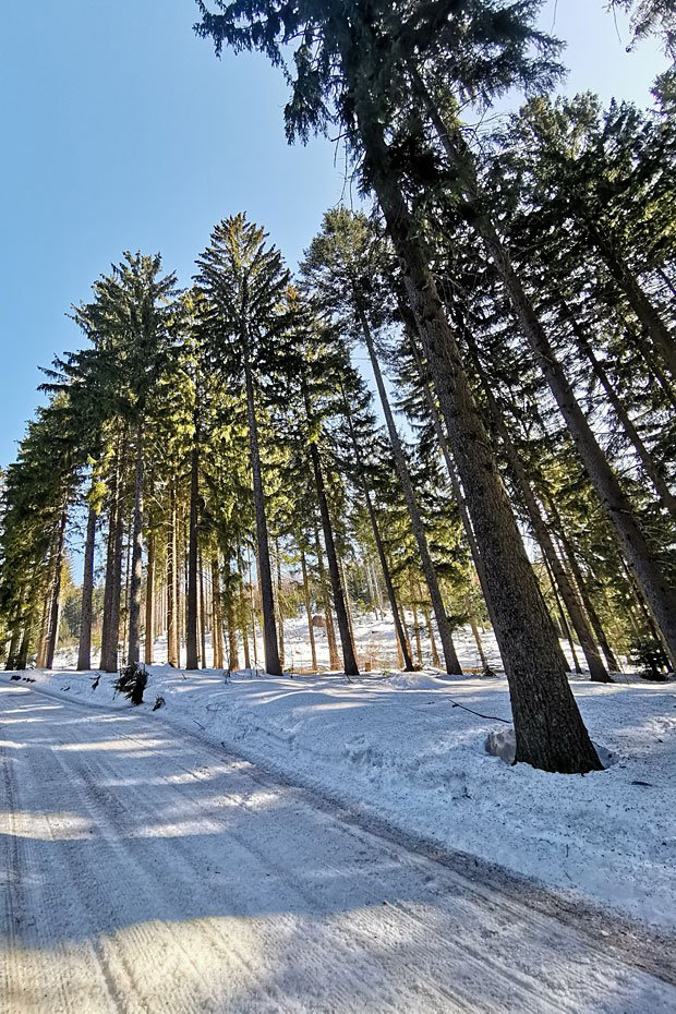 Winterwonderland Bayerischer Wald