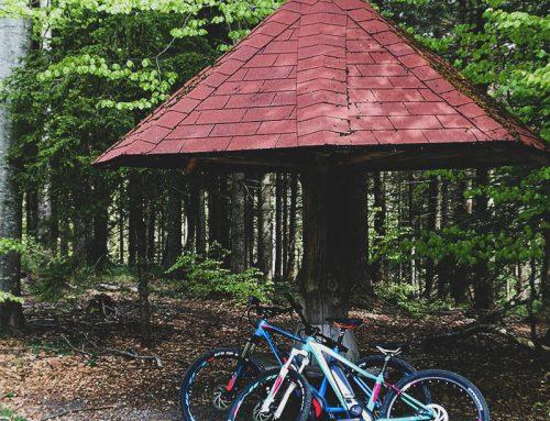 E-Bike Tour zum Landshuter Haus / Geißkopf im Bayerischen Wald