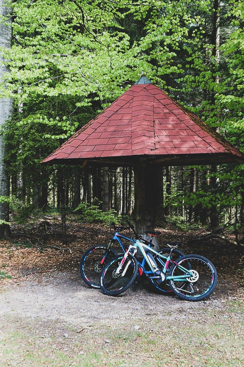 E-Bike Tour vom Wellnesshotel Bayerischer-wald