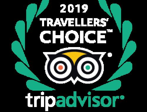 Travellers Choice Award 4 Sterne Wellnesshotel Zum Bräu – Bayerischer Wald
