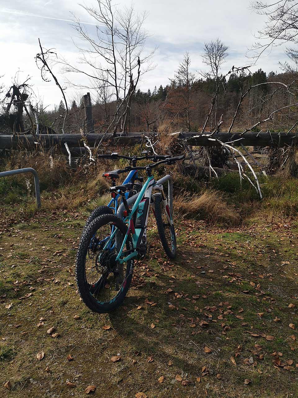 Mountainbiken Tour im Bayerischen Wald